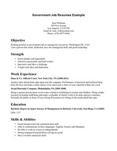 government job resumes example image simple resume examples for jobs template