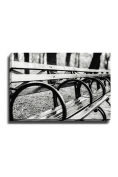 Central Park Bench Wall Art