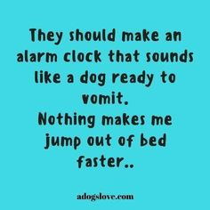That sound makes me move faster then I ever think I can. Funny Quotes, Funny Memes, Hilarious, Jokes, Funny Dogs, Life Quotes, Belly Laughs, I Love To Laugh, Animal Quotes