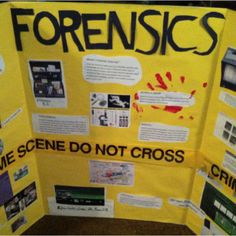 Forensic Science for the Science Fair!