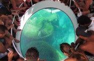 Portal Noronha Diving, Portal, Raisin, Island, Weather, Paisajes, Places To Visit, Traveling, Tourism