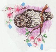 Kittencaboodles tarafından baykuş dövme tasarım