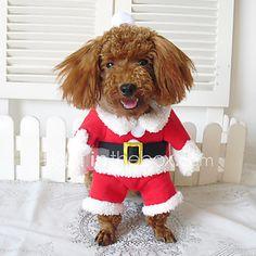 Cães Fantasias   Casacos   Bandanas e Chapéus   Roupa Vermelho Inverno  Fantasias   Natal   32cb3ff03fd