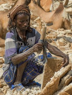 In the Danakil Desert, Salt Miners - Ethiopia