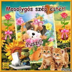 Good Night, Good Morning, Betty Boop, Emoji, About Me Blog, Teddy Bear, Album, Humor, Animals