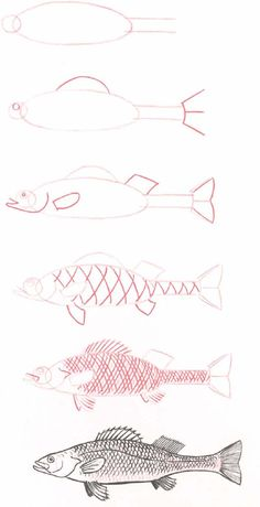 Aprende a dibujar animales..xD - Portalnet.CL