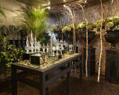Stephane Chapelle Paris