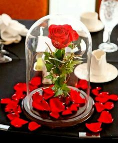 Wedding decoration. Join us at Http://bitly.com/themeweddingideas  And get 100…