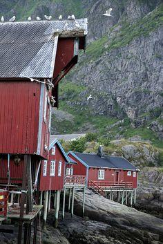 Å, Lofoten/ Norway