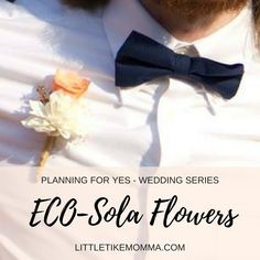 An Eco Alternative to Silk and Plastic Flowers Sola Flowers, Plastic Flowers, Plan My Wedding, Budgeting, Alternative, How To Plan, Wood, Woodwind Instrument, Timber Wood