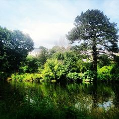 Nice park by the river Outdoor Yoga, Cork, Country Roads, River, Corks, Rivers