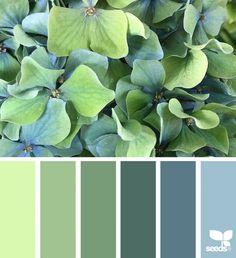 Design Seeds, Green Colour Palette, Color Palate, Green Pallete, Green Color Schemes, Paint Colors For Home, House Colors, Color Concept, Decoration Palette