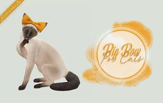 Big Bow For Cats ♥  converted from dogs  [SimFileShare]