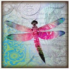 Una de vosotras me pedía hace unos días láminas de insectos..  He de confesar que no me gustan los insectos pero los dibujos de libélulas. s... Decoupage, Dragonfly Art, Butterflies Flying, Silk Painting, Illustrations, Pretty Pictures, Rock Art, Mixed Media Art, Ladybug