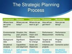Business Strategy/Marketing Plans and Strategies
