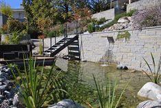 Schwimmteich und Bepflanzung von Kobel Gartengestaltung Gardening, Sidewalk, Outdoor Decor, Plants, House, Swim, Patio, Yard Maintenance, Water Pond