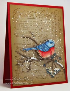 Stampendous Snow Bird stamp paired with the fantastically amazing Christmas Background (both are available over at i {heart} papers - and so are the action wobbles!). I stamped the background onto the Kraft card stock in Distress Ink (I also used that to sponge the edges), and then used darker Memento Rich Cocoa ink to stamp the bird image. After I colored the branch and berries with my Spectrum Noir markers, I added Shabby White Embossing Enamel with a Versamark pen, and heat set it