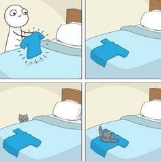 Gato científico added a new photo. Crazy Cat Lady, Crazy Cats, I Love Cats, Cute Cats, Cat Comics, Cat People, Here Kitty Kitty, Bad Kitty, Cat Memes