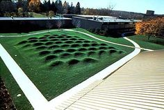 Maya Lin - Wave Field