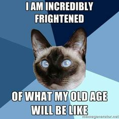 It's funny because it's true... I'm absolutely terrified.