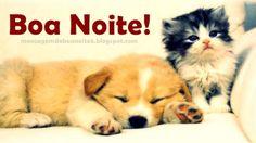 Boa Noite pra Você!