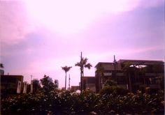 Bubblegum Sky -- Lomography Colorsplash Love #COLORSPLASH #LOVE #COLORSPLASHLOVE #LOMO #LOMOGRAPHY #ANALOGUE #ANALOG #CITY #URBAN #METRO #MANILA #PHILIPPINES #PINK #BUBBLEGUM #TREE #TREES #BUILDINGS #BUILDING #SERENDRA #STREET #STREETS #BONIFACIO