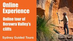 Online tour of Berowra Valley's cliffs   Sydney guided Tours Tour Guide, Cliff, Sydney, National Parks, Hiking, Tours, Poster, Walks, Trekking