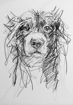 Art by Lucy Wilson — Day - Graphite and crayon on card b Animal Sketches, Animal Drawings, Drawing Sketches, Art Drawings, Doodle Sketch, Art And Illustration, Scribble Art, Dog Portraits, Animal Paintings