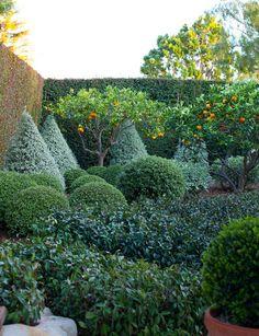 Gorgeous garden of and Bruce Gregga in Montecito. Citrus trees always enhance a garden. Thank you Mark Sikes for this photo. Formal Gardens, Unique Gardens, Beautiful Gardens, Outdoor Gardens, Garden Gates, Garden Art, Garden Design, Garden Ideas, Citrus Trees