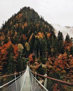 Summer crossing over the bridge to Autumn.