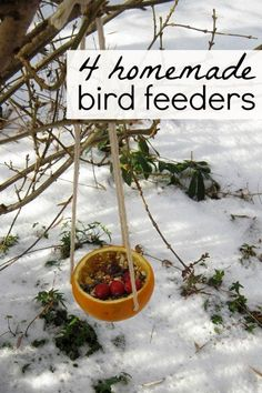 Easy bird feeder crafts for kids. Hang these in the garden for the local birds.