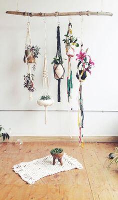 Macrame plant hanger - Hanging plants on limb. Decoration Branches, Room Decorations, Travel Decorations, Ideas Prácticas, Decor Ideas, Home And Deco, Hanging Planters, Diy Hanging, Diy Planters