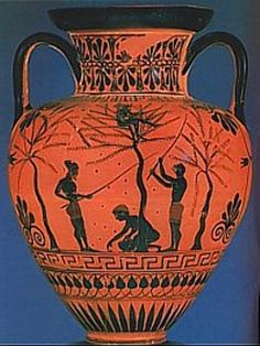 Greek Amphora for storing olive oil and scenes depicting olive harvest.