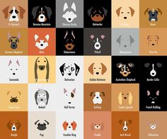 My name is Laura Palumbo and I've always loved animals. One day I have been inspired by India, my sister's dog, thanks to the color of her coat, so I decided to illustrate the main dogs breeds through a minimalist style and with the use of negative space.  My sister is studying Canine Education and I've always admired the passion and the enthusiasm whereby she studies dogs and their behavior.