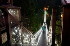 Canyon Lights at the Capilano Suspension Bridge Park! This year, they host the tallest Christmas tree and the whole park is engulfed in beautiful Christmas lights. http://jaybanks.ca/vancouver-blog/2013/12/12/capilano-suspension-bridge-canyon-lights-photos/