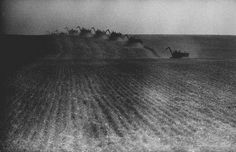 A line of eight combines cuts through a wheat field in the summer haze, 1959, Nebraska. That's food. That's prosperity. That's beautiful.