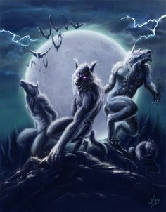 Werewolves Bark At The Moon, Howl At The Moon, Fantasy Creatures, Mythical Creatures, Apocalypse, Of Wolf And Man, Gothic, Werewolf Art, Legends And Myths