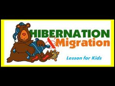 Hibernation and Migration -Lesson for kids