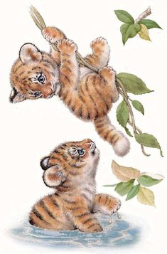 Zoo, jungle, jungle animals pictures to lower , Jungle Animals Pictures, Animals Images, Cute Baby Animals, Animal Pictures, Wild Animals, Baby Animal Drawings, Cute Drawings, Photo Elephant, Tiger Art