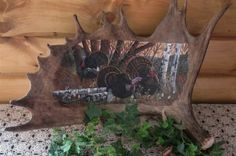 Hand Painted Moose Antler Turkey's-Hand Painted, Moose, Antler, Turkey's, wildlife, hunting, hand painted, gifts