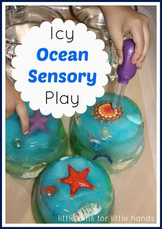 Icy Ocean Sensory Play (from Little Bins for Little Hands)