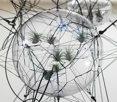 detail of the human-sculpture interaction component of the installation in addition to the succulent-decorated structures spread through out the show  tomás saraceno 'cloud cities', 2011 installationsansicht hamburger bahnhof