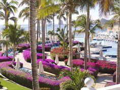 top-mexico-all-inclusive-resort-in-cabo-san-lucas-E356R2720_745_559.jpg (745×559)