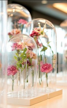Floral Designs by Tomas De Bruyne - Single flowers are placed in tiny glass tubes and placed under a glass cloche