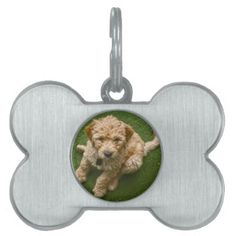 #Adorable Puppy Pet ID Tag - #pettag #pettags #dogtag #dogtags #puppy #dog #dogs #pet #pets #cute #doggie