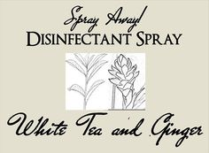 Spray Away! WHITE TEA & GINGER Disinfectant Spray on Etsy, $6.50