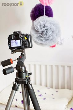 roomor!: Photo session for Trilli.pl & Humpty Dumpty Room Decoration, Pom…