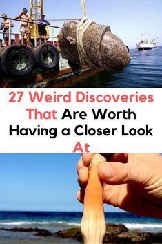 27 Weird Discoveries That Are Worth Having a Closer Look At - Viral Hacks Photography Women, Portrait Photography, Tissue Paper Crafts, Crazy Costumes, Weird Dreams, Wtf Fun Facts, Weird Pictures, Elle Fanning, Latest Updates