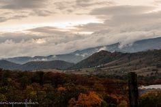 Harper Hill Road near Seneca Rocks National Recreational Area - Photy by Denise Powers Fabian