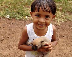 World Vets.  International Aid for Animals.  www.worldvets.org